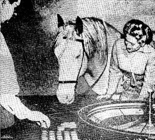Club Cal-Neva Permits Horseplay